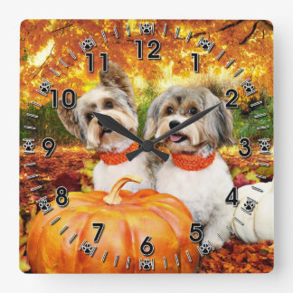 Fall Thanksgiving - Max & Leo - Yorkies Square Wall Clock
