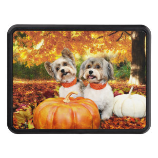Fall Thanksgiving - Max & Leo - Yorkies Trailer Hitch Cover