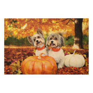 Fall Thanksgiving - Max & Leo - Yorkies Wood Wall Art