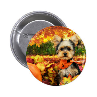 Fall Thanksgiving - Max - Yorkie 2 Inch Round Button