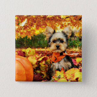 Fall Thanksgiving - Max - Yorkie 2 Inch Square Button