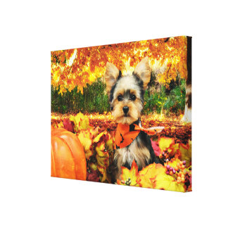 Fall Thanksgiving - Max - Yorkie Canvas Print