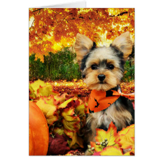 Fall Thanksgiving - Max - Yorkie Card