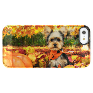 Fall Thanksgiving - Max - Yorkie Clear iPhone SE/5/5s Case