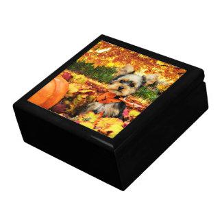 Fall Thanksgiving - Max - Yorkie Gift Box