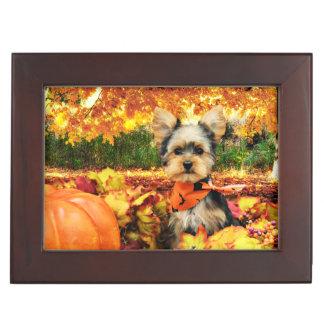 Fall Thanksgiving - Max - Yorkie Keepsake Box