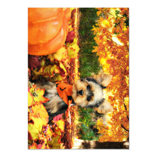 Fall Thanksgiving - Max - Yorkie Magnetic Card