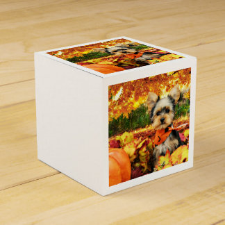 Fall Thanksgiving - Max - Yorkie Party Favor Boxes