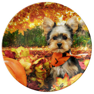 Fall Thanksgiving - Max - Yorkie Porcelain Plates