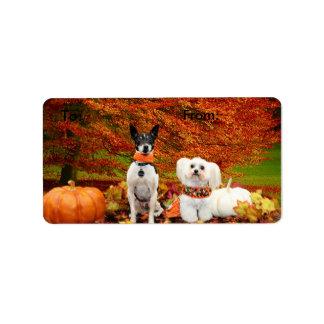 Fall Thanksgiving - Monty Fox Terrier & Milly Malt