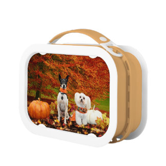 Fall Thanksgiving - Monty Fox Terrier & Milly Malt Lunch Box