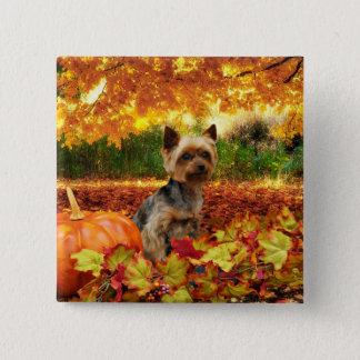 Fall Thanksgiving - Tucker - Yorkie 2 Inch Square Button