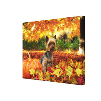 Fall Thanksgiving - Tucker - Yorkie Canvas Print