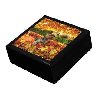 Fall Thanksgiving - Tucker - Yorkie Gift Box