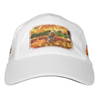 Fall Thanksgiving - Tucker - Yorkie Hat