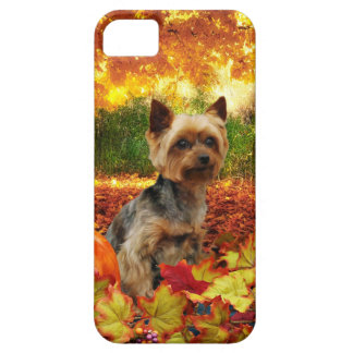 Fall Thanksgiving - Tucker - Yorkie iPhone 5 Covers
