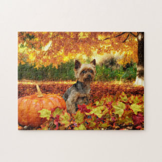 Fall Thanksgiving - Tucker - Yorkie Jigsaw Puzzle