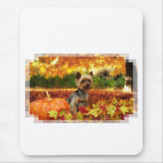Fall Thanksgiving - Tucker - Yorkie Mouse Pad