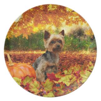 Fall Thanksgiving - Tucker - Yorkie Plate