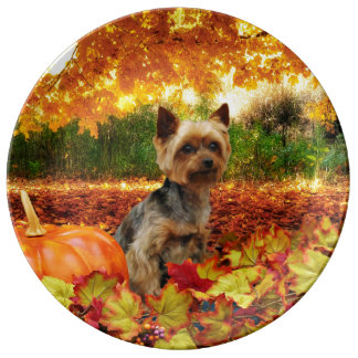 Fall Thanksgiving - Tucker - Yorkie Porcelain Plate