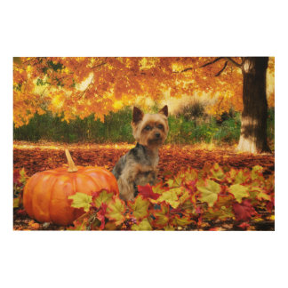 Fall Thanksgiving - Tucker - Yorkie Wood Wall Decor