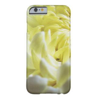 Fall-Themed Case - Chrysanthemum Closeup
