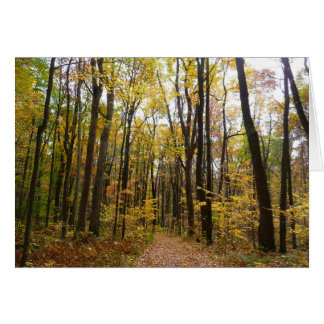 Fall Trail and Golden Leaves at Laurel Hill Park Card