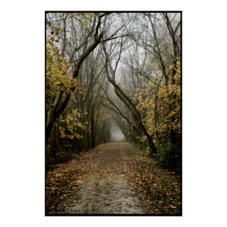 Fall Trail Leads Into the Fog Poster