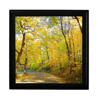 Fall Tree Colors ... Black Enamel Gift Box