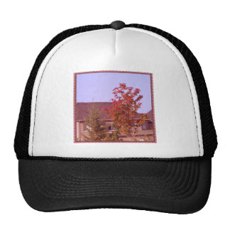 FALL Tree Oakville Ontario Gifts Shirts Mesh Hat