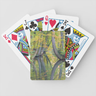 Fall tree trunks with reflection in forest water bicycle playing cards