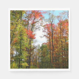 Fall Trees and Blue Sky Autumn Nature Photography Paper Napkins