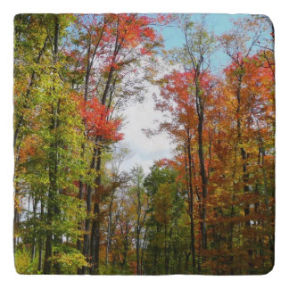 Fall Trees and Blue Sky Autumn Nature Photography Trivet