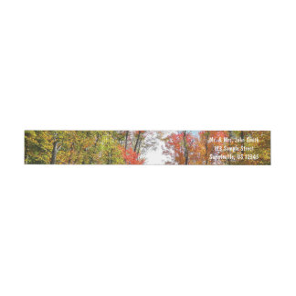 Fall Trees and Blue Sky Autumn Nature Photography Wrap Around Label