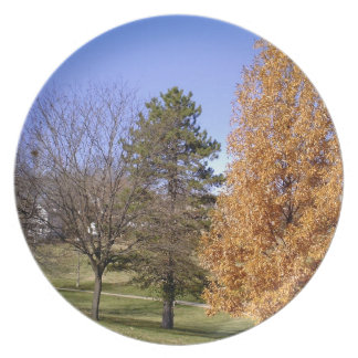 Fall Trees Dinner Plates