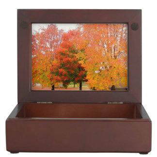Fall Trees Keepsake Boxes