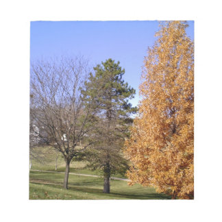 Fall Trees Notepad