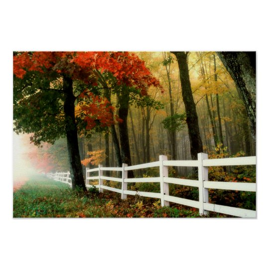Fall Trees with White Picket Fence Poster