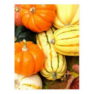 Fall Vegetables Postcard