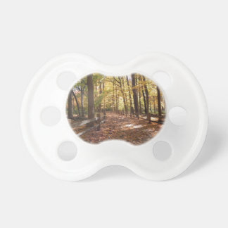 Fall walk in the park and changing colors baby pacifier