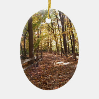 Fall walk in the park and changing colors ceramic ornament