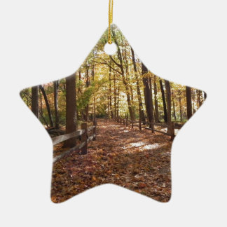 Fall walk in the park and changing colors ceramic star ornament