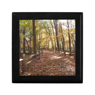 Fall walk in the park and changing colors jewelry box