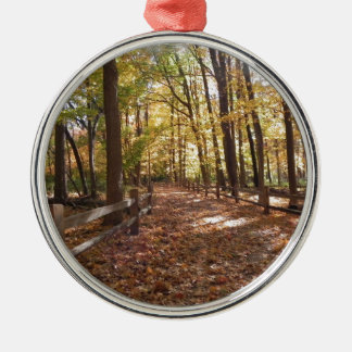 Fall walk in the park and changing colors metal ornament