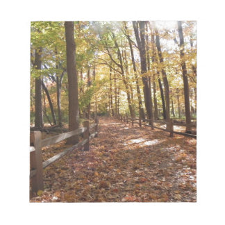 Fall walk in the park and changing colors notepad