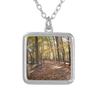 Fall walk in the park and changing colors silver plated necklace