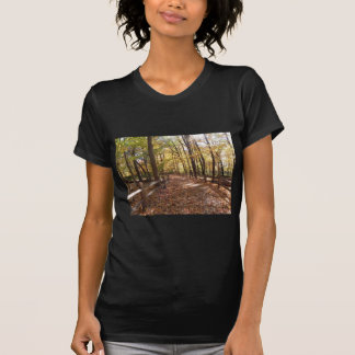 Fall walk in the park and changing colors T-Shirt