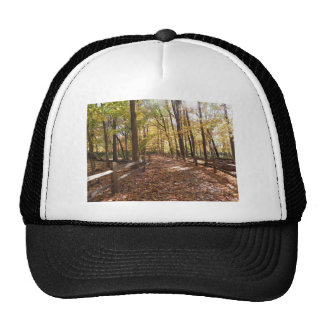 Fall walk in the park and changing colors trucker hat
