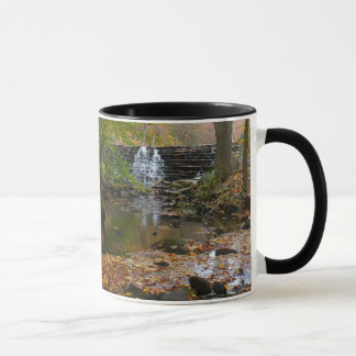 Fall Waterfall and Creek Pennsylvania Nature Photo Mug