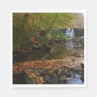 Fall Waterfall and Creek Pennsylvania Nature Photo Paper Napkin